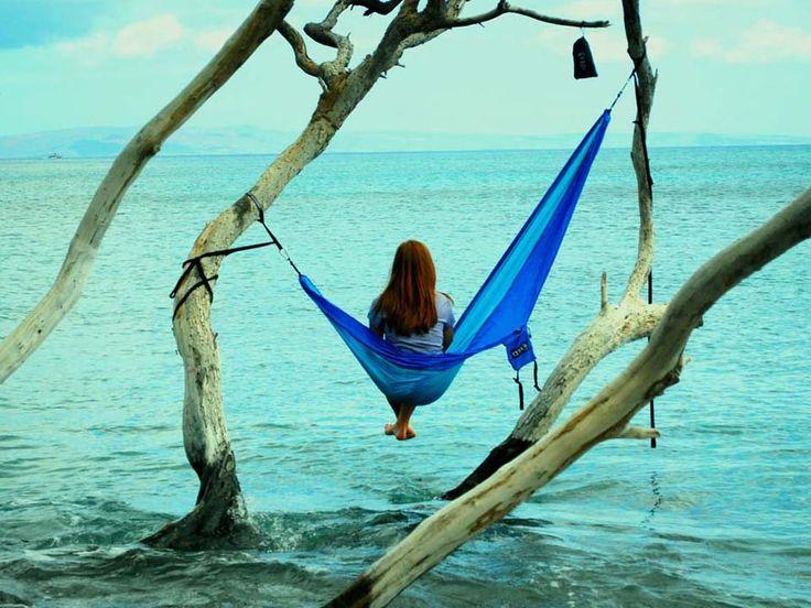 SingleNest Hammock. I've been thinking about hammocks for camping.