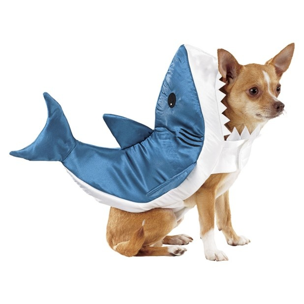 215 best Ridiculous dog costumes images on Pinterest ...
