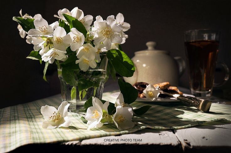 https://flic.kr/p/HSfxni   Fresh jasmine flowers in glass on sunny rays   Порою жизнь складывается в красивую картинку из совершенно незаметных и маленьких вещей. Ароматной ветки жасмина, свесившейся через забор, и утреннего луча солнца, заглянувшего в окно... Главное не проходить мимо маленьких радостей!  Constant link for image sale :http://goo.gl/YrsBBB