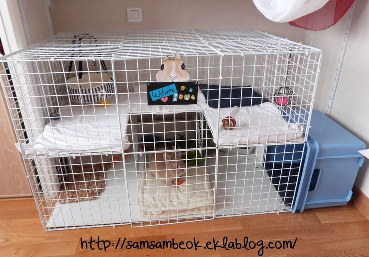 les 25 meilleures id es de la cat gorie cage pour lapin en exclusivit sur pinterest cage de. Black Bedroom Furniture Sets. Home Design Ideas