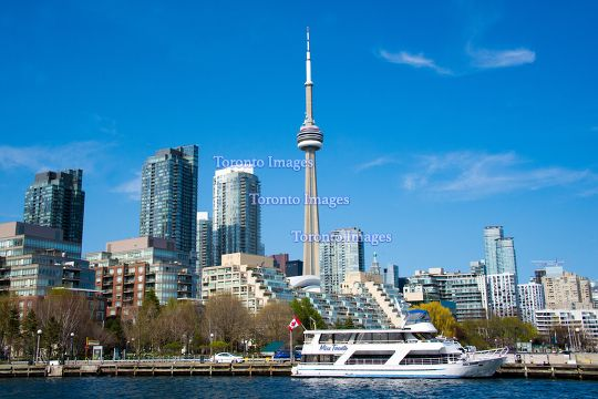 Toronto,Canada: CN Tower and the City Skyline in Daytime