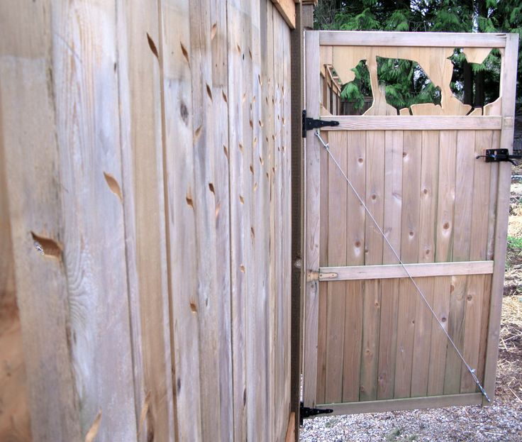 Best 25 Chicken Fence Ideas On Pinterest Yard And Coop