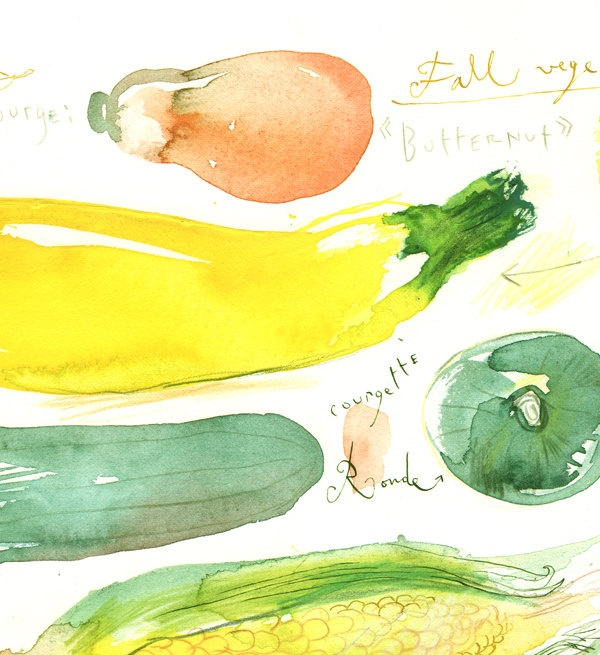 17 Best Images About Regrow Veggies On Pinterest: 17 Best Images About Watercolor Food On Pinterest