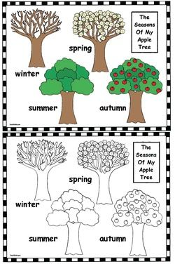 "Apple activities: FREE ""Seasons of My Apple Tree"" color-me poster."