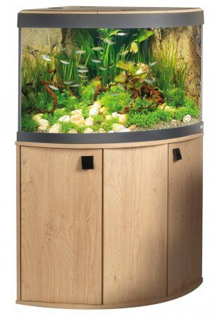 Corner aquarium with large pebbles and sloping from front to back for added dimension. Focal point off-center. Natural rock background.