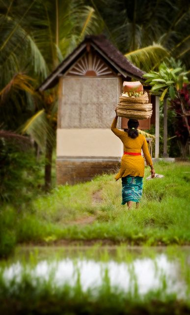Ubud, Bali, Indonesia  I have been to Ubud, It is a very beautiful area, outside of Jakarta, Bali on the way to Belingbing. Rice paddies, a simple life there.