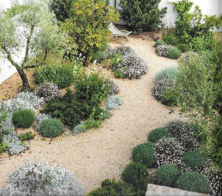 Jardin sur gravier - jardin méditerranéen