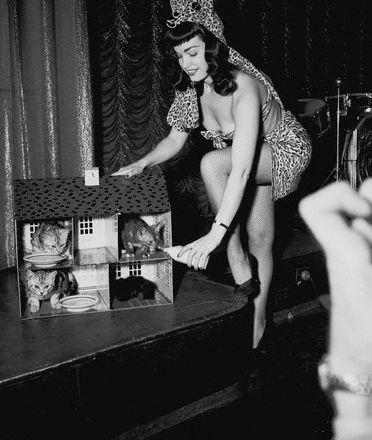 Bettie Page and a couple of house cats.