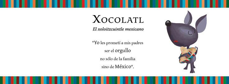 Xocolatl. El xoloitzcuintle mexicano