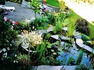 32 best images about plants for backyard ponds form for Koi pond builders orlando fl