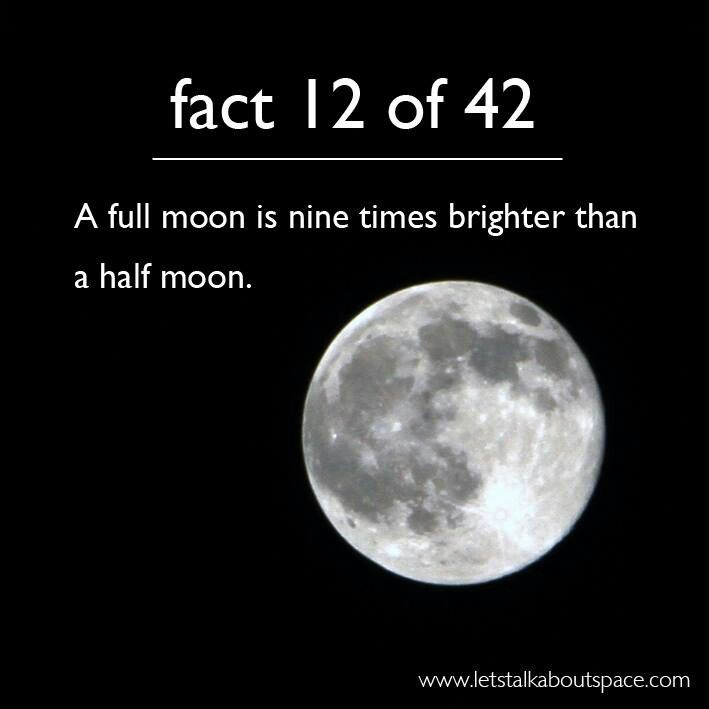 half moon astronomy - photo #32