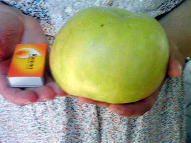 Egy kanál cukor: Alma reszelve lepénybe, rétesbe, cukorbetegeknek i...