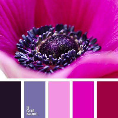 color casi negro, color fucsia, elección del color para el diseño, matices de color fucsia, morado, negro y rosado, paletas de diseño, rojo burdeos, rojo y rosado, rosado fuerte, rosado vivo, rosado y violeta, tonos rosados, violeta y rosado.