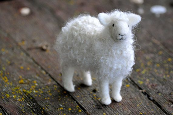 This class is designed for beginners- no previous felting or sewing experience is necessary. Students will learn different felting methods,