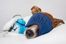 Amazing Benefits of Sleeping on the Left Side