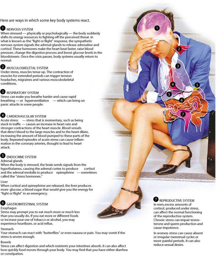 Effecten van emotionele stress op verschillende systemen, organen en weefsels over het hele lichaam, zoals wordt geïllustreerd in het diagram. Wanneer het lichaam van emotionele overbelasting niet meer zelf kan herstellen kan Body Stress Release daarbij helpen. Deze milde techniek helpt het zelfherstellend vermogen van het lichaam en zorgt ervoor dat natuurlijke veerkracht en gezondheid weer terug keert. www.bodystressrelease.nl/hoe-werkt-body-stress-release/de-body-stress-release-techniek/