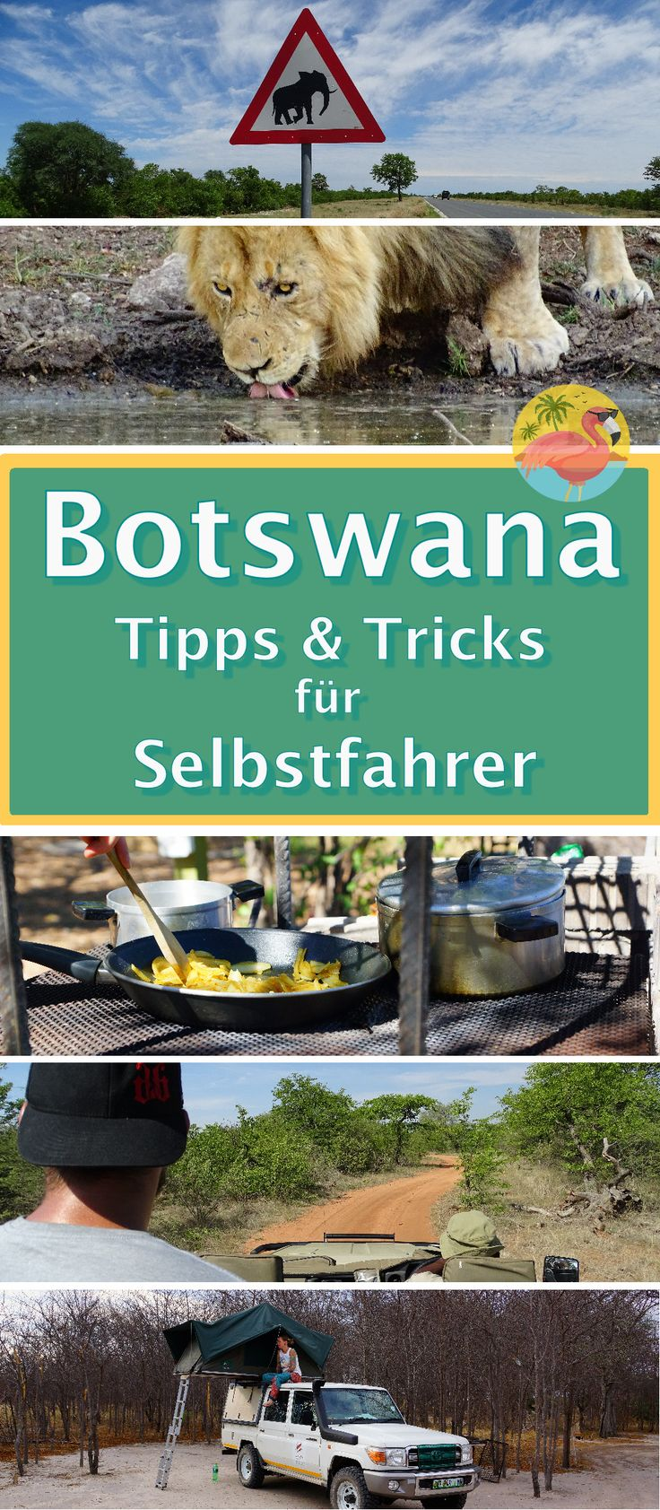 Botswana ist kein günstiges Reiseland. Trotzdem kann man mit ein paar Tipps hier und da etwas sparen. Wir verraten dir, wie.  Wir waren insgesamt 22 Tage in Botswana unterwegs (mit kurzem Abstecher nach Simbabwe). Welche Erfahrungen wir gemacht haben, auf was man achten sollte, wie die Straßenverhältnisse sind, ob man Malariaprophylaxe braucht, was die beste Reisezeit ist und vieles mehr kannst du hier nachlesen.