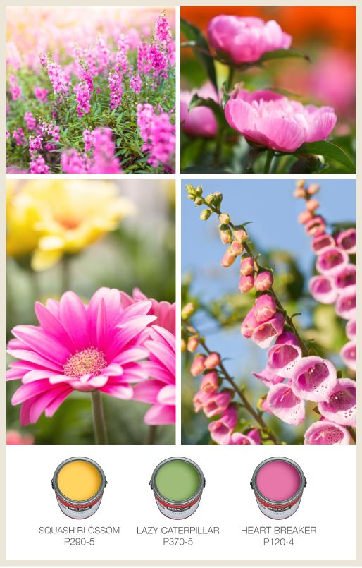 83 best Summer Inspiration images on Pinterest | Bright colors ...