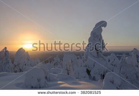 Trees covered by heavy snow in Lapland Finland on sunset. Photo taken on mountain near popular tourist ski resort. - stock photo