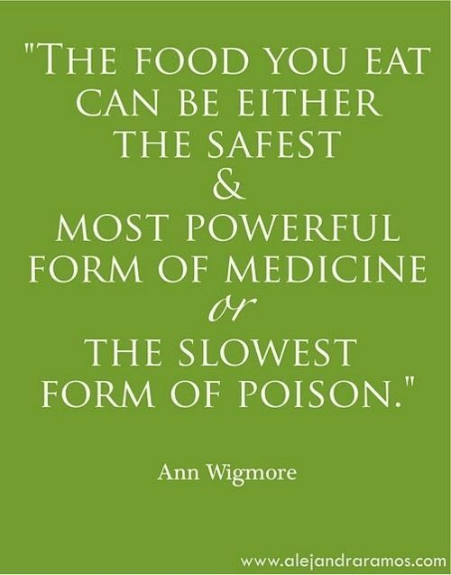 The food you eat can be either the safest and most powerful form of medicine, or the slowest form of poison. - Ann Wigmore blendtec