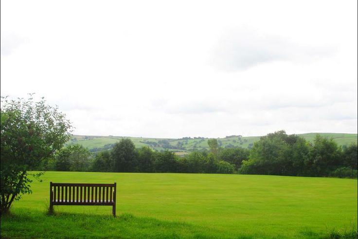 Green n Pasture land
