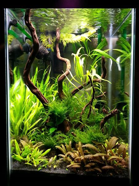 15g column low tech, this would work in caitlins