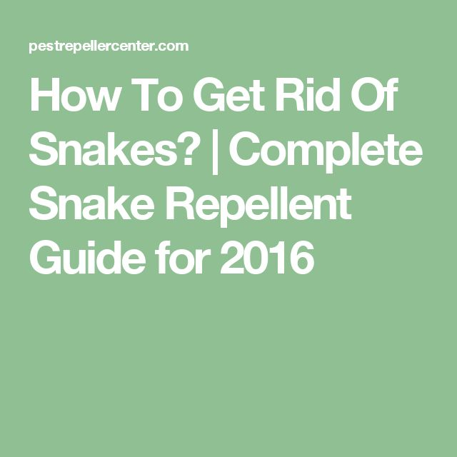 How To Get Rid Of Snakes? | Complete Snake Repellent Guide for 2016