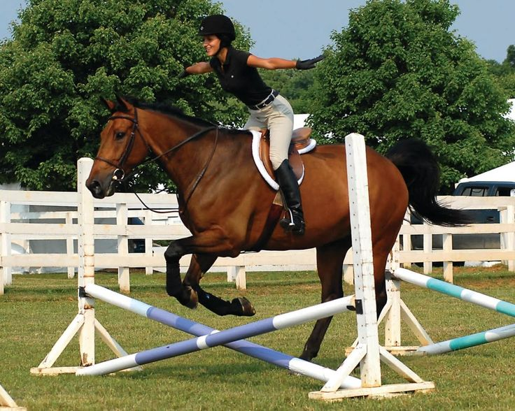 Horse in a rush to jump? Rider position influence