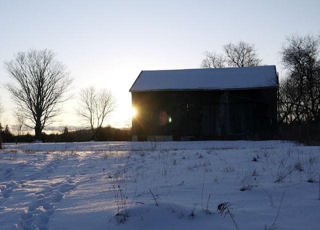 Farm near Owen Sound, Ontario