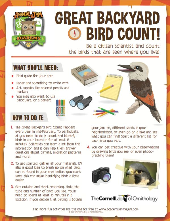 Get ready for the Great Backyard Bird Count! You can be a backyard scientist and count birds in your neighborhood this February 17-20! Get started with this FREE download from AJ Academy. Learn even more about birds when you play Animal Jam! Keep exploring and PLAY WILD!