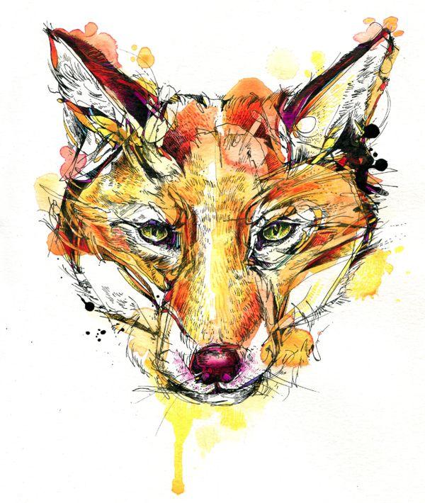 Red Fox Portrait by Abby Diamond, via Behance