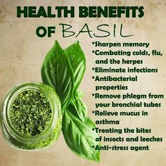 Health benefits of Basil. I had no idea. I plan to eat more, I could use some extra boost.