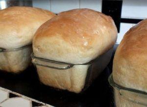 Best Honey Buttermilk Bread Recipe