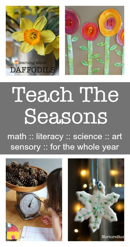 A complete resource to Teach The Seasons :: seasonal activities for the whole year