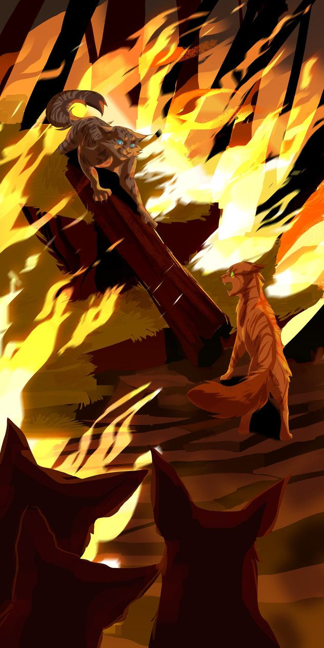 Ashfur and Squirrelflight stand-off