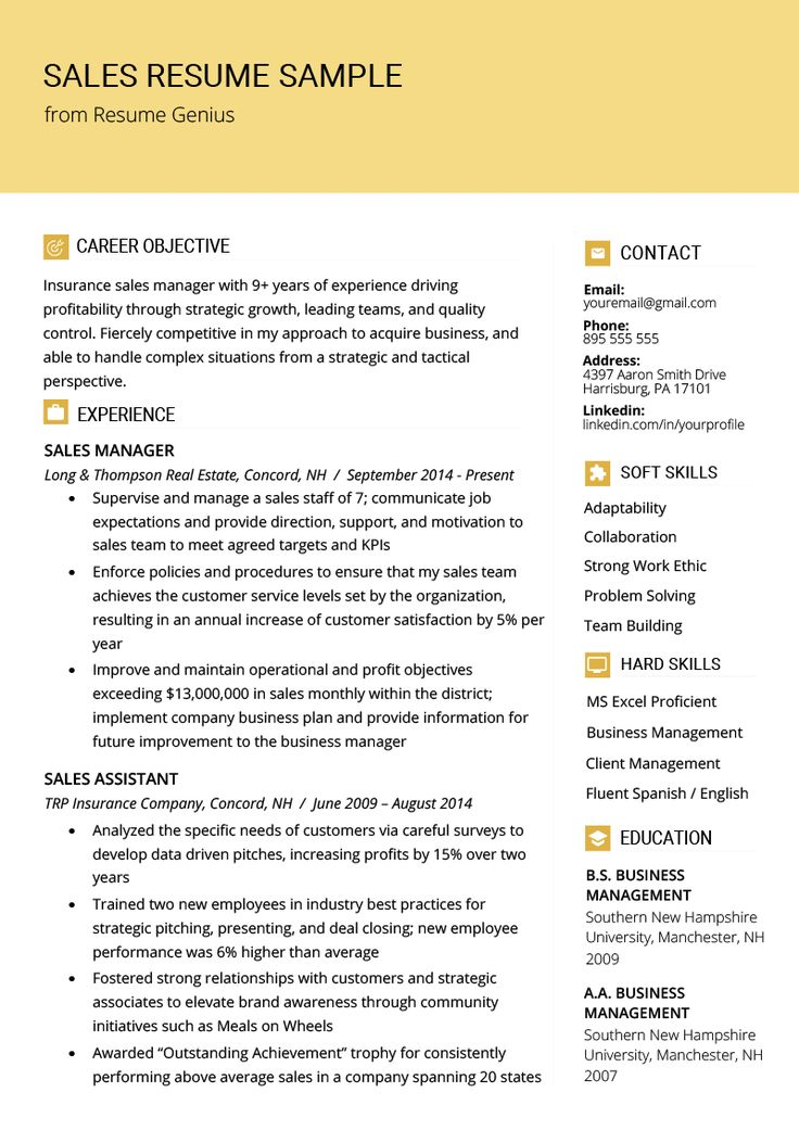 Sales Resume Samples & Writing Tips Sales resume