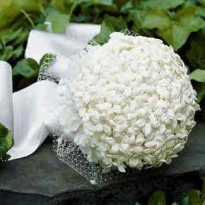 stevens point wi wedding flowers 300x300 Pretty Stephanotis Wedding Flowers