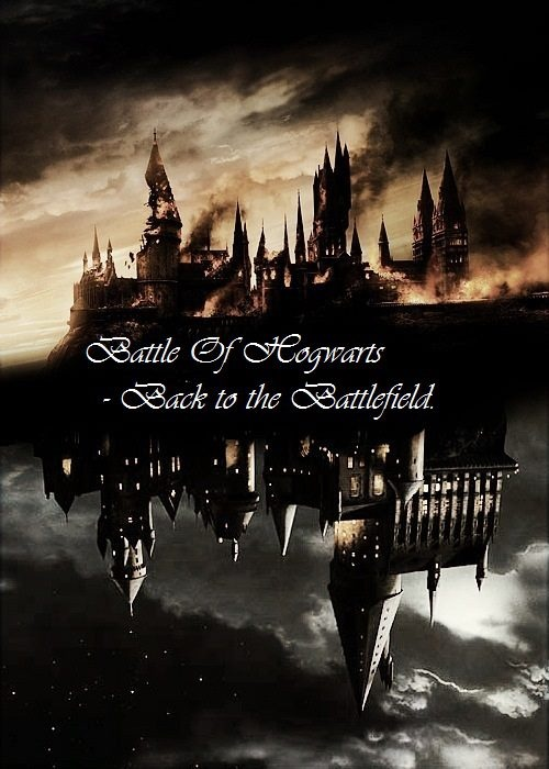 I have goosebumps and a knot in my throat. The Battle of Hogwarts.Platform, Hogwarts 1998, The Battle Of Hogwarts, Knots, Throat, Goosebumps