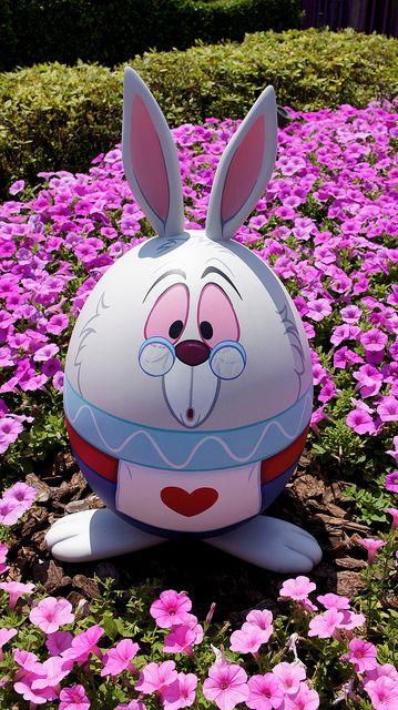Pascua Conejo Blanco