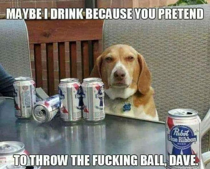 Maybe I drink because you pretend to throw the fucking ball, Dave.