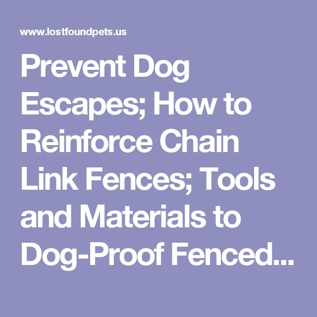 The 25 Best Dog Proof Fence Ideas On Pinterest Fence