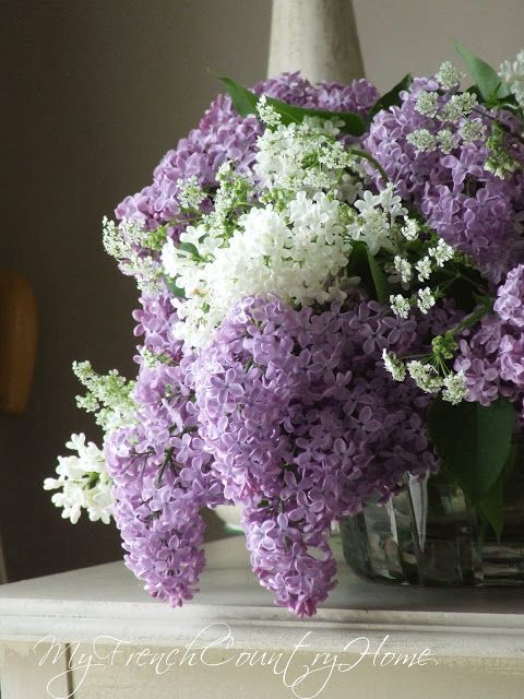 Lilac Time In Normandy My French Country Home French