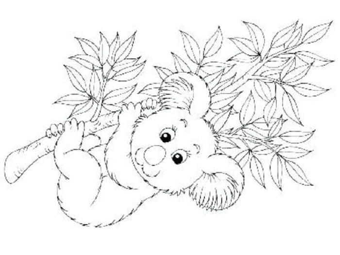 Kawaii Koala Coloring Pages Owl Coloring Pages Coloring Pages Birthday Coloring Pages