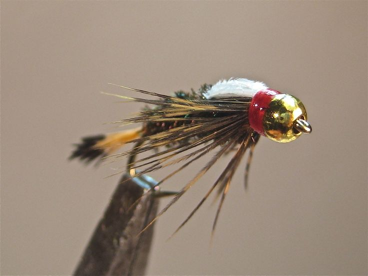 767 best fly fishing images on pinterest bait brown for Royal flush fishing