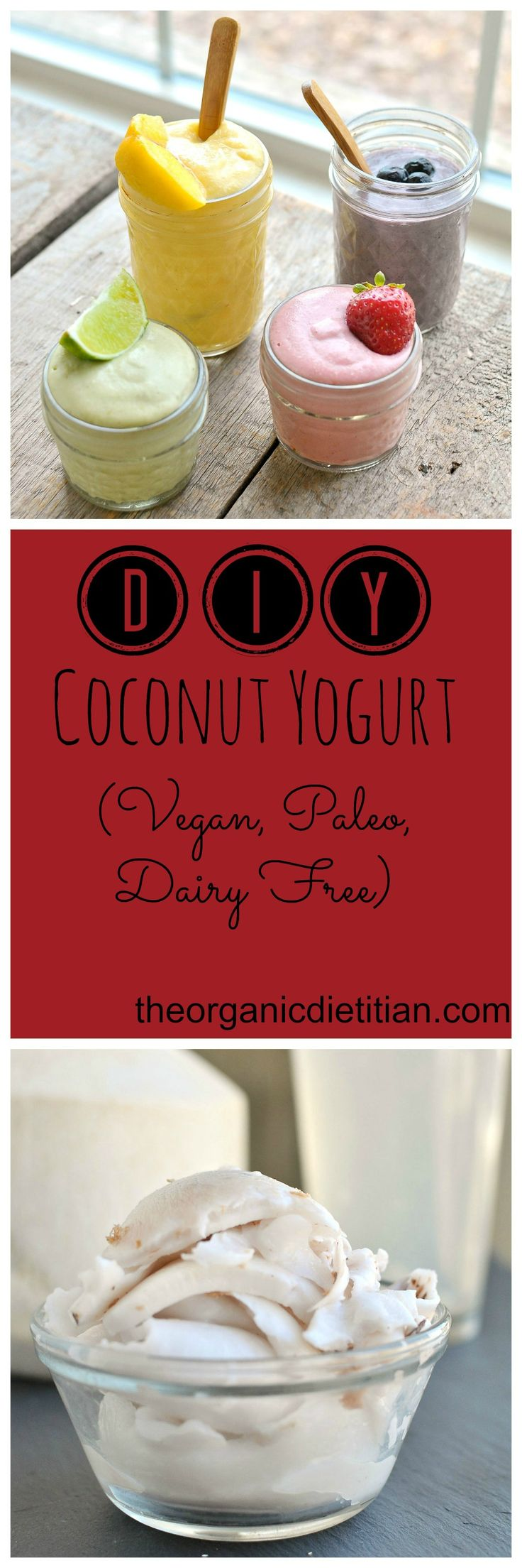 DIY Cococnut Yogurt from fresh young coconut meat.  Only 2 ingredients for the base. #vegan #paleo #dairyfree