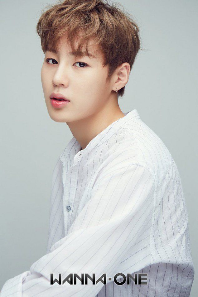 Wanna One drops second set of individual profile photos + official website | allkpop.com