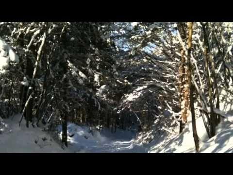 "▶ Andreas Scholl - ""Schlage doch,gewünschte Stunde"" J.S.Bach - YouTube"