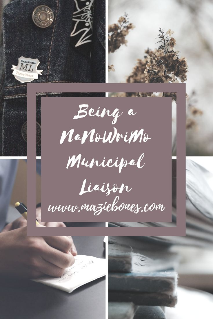 It was a rainy afternoon in August when I received the email from the lovely staff at NaNoWriMo. The email was regarding my application to be a Municipal Liaison for my region of Niagara, an application that I sent the day after NaNoWriMo 2013. I think it was more exciting to me because it had …