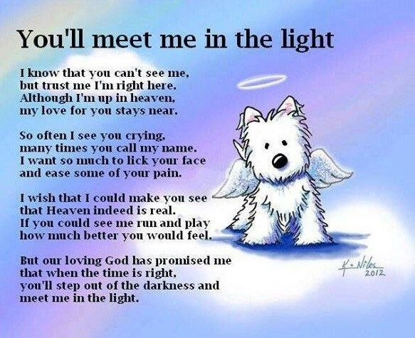 all dogs go to heaven quotes and Poem