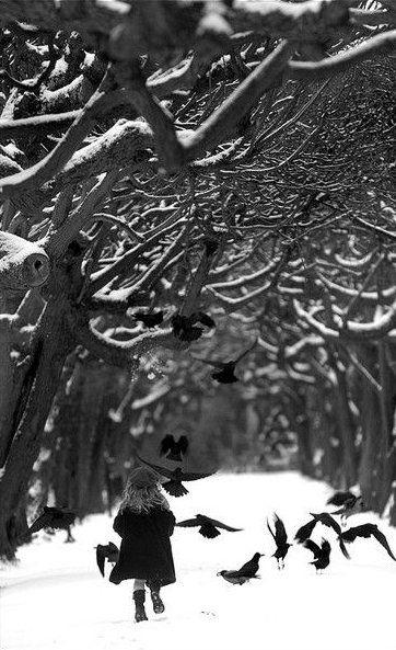 Ravens Wood, Warsaw, Poland